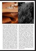 Lorem - Page 3