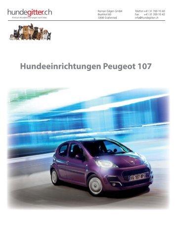 Peugeot_107_Hundeeinrichtungen
