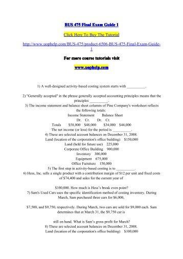 bus 496 exam guide