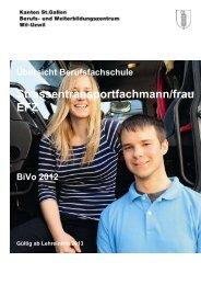 Strassentransportfachmann/frau EFZ