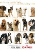 union canine mousgronnoise - Union Canine Mouscronnoise - Page 5