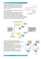 ÁCIDOS NUCLEICOS apuntes - Page 3