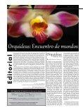 Orquídeas - Page 2