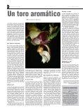 Orquídeas - Page 4