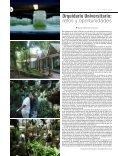 Orquídeas - Page 6