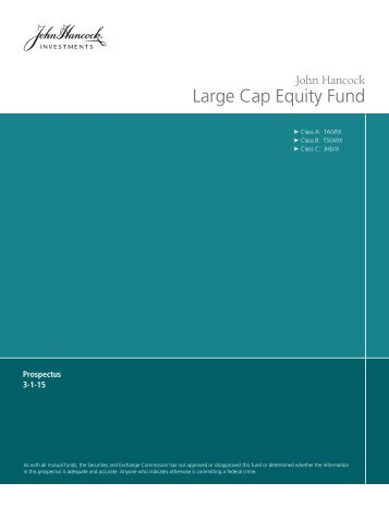 Large Cap Equity Fund