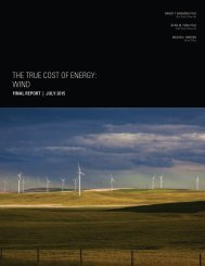 THE TRUE COST OF ENERGY WIND