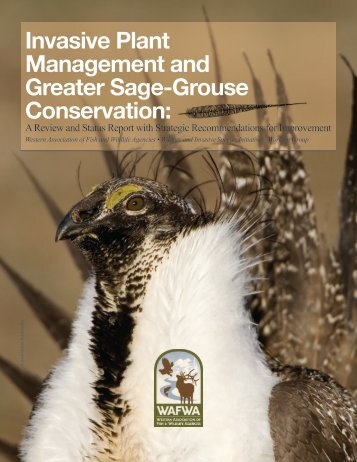 Invasive Plant Management and Greater Sage-Grouse Conservation