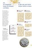 IPC. Ihr kompetenter Partner für Granulate und Pellets. - Glatt - Seite 3