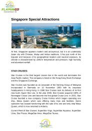 Singapore Special Attractions