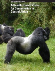 A Results-Based Vision for Conservation in Central Africa