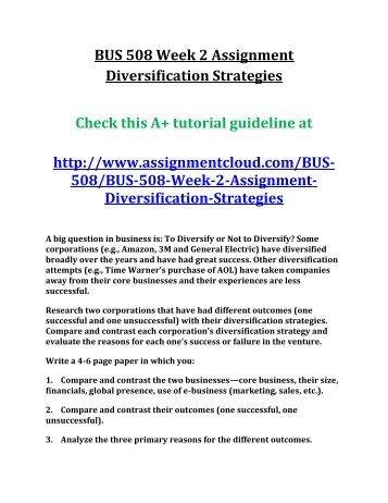 ASH BUS 508 Week 2 Assignment Diversification Strategies