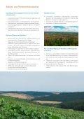 Jahresbericht - Page 6