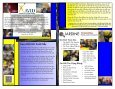 Jardine Informational Brochure (Vietnamese) - Page 4