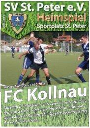 SVS-Heimspiel 2015/16-06