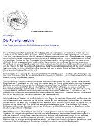 Viktor Schauberger - Die Forellenturbine Explosion Und Implosion
