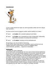 Vaccinatie hond Je kan je puppy beschermen tegen een ...