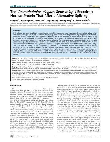 The Caenorhabditis elegans Gene mfap-1 Encodes a - MIT