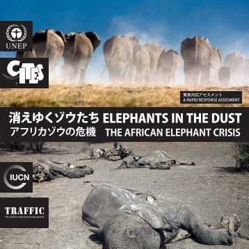 消 えゆくゾウたち ELEPHANTS IN THE DUST