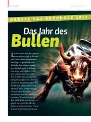 Das Jahr des Bullen - Grüner Fisher Investments