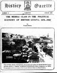 The Middle Class In The Political Economy Of British Guiana: 1870-1928