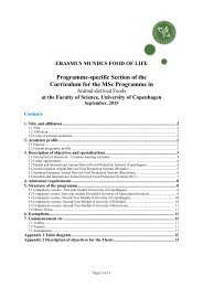 Programme-specific Section of the Curriculum for the MSc Programme in