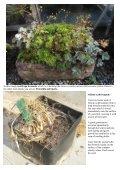 Bulb Log Diary - Page 7