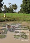 Ökológiai gazdálkodás - Page 3