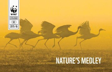NATURE'S MEDLEY