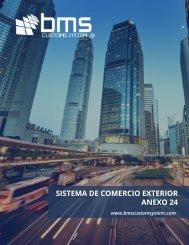 SISTEMA DE COMERCIO EXTERIOR ANEXO 24