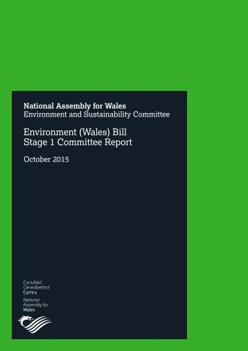 Environment (Wales) Bill Stage 1 Committee Report