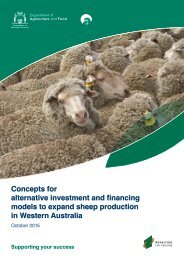 Concepts for alternative investment and financing models to expand sheep production in WA
