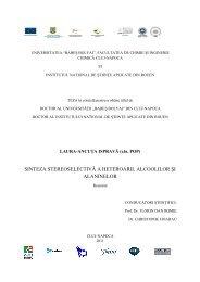 Rezumat teza limba romana