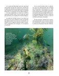 Isla Natividad - Page 3
