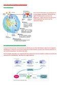 CHAP 10  LA REACTION INFLAMMATOIRE AIGUE - Page 3