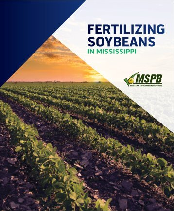 FERTILIZING SOYBEANS