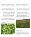FERTILIZING SOYBEANS - Page 3