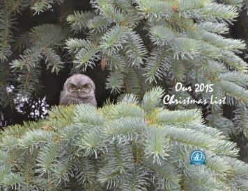 Our 2015 Christmas List