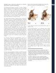 movilidad social a través de la educación en los municipios de Colombia - Page 3
