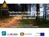 Tipificación y Gestión de los Incendios Forestales de la Región Alto Minho