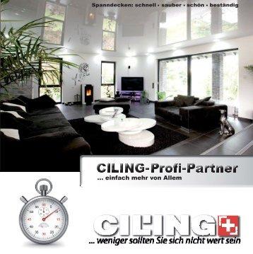 Broschüre Profi Partner Einzelseiten 12022013