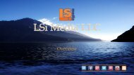LSI Media:  Overview
