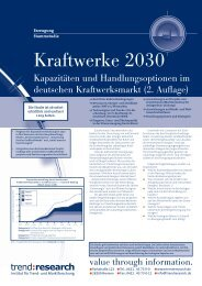 Kraftwerke 2030 - trend:research