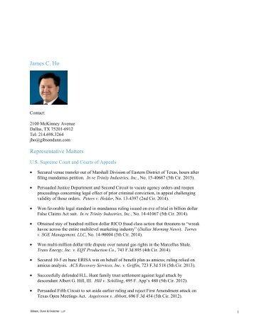 James C Ho Representative Matters