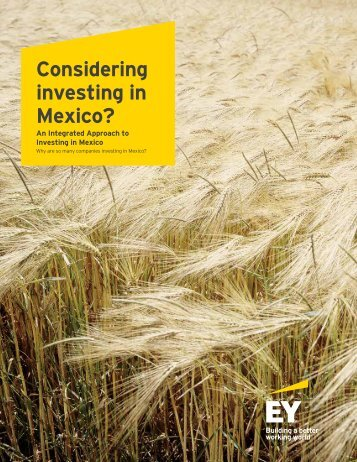 Considering investing in Mexico?