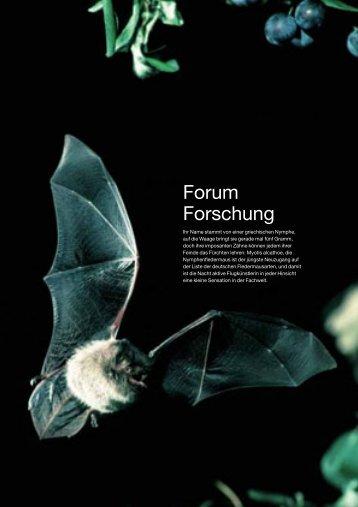 Forum Forschung - Friedrich-Alexander-Universität Erlangen ...