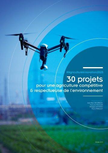 30 projets