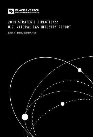 2015 STRATEGIC DIRECTIONS U.S NATURAL GAS INDUSTRY REPORT