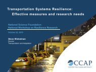 Transportation Systems Resilience Effective measures and research needs