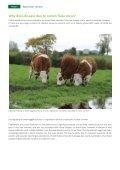Rumen Fluke - Page 4